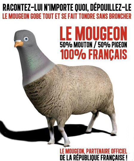 mougeon